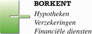 Borkent Verzekeringen & Hypotheken logo